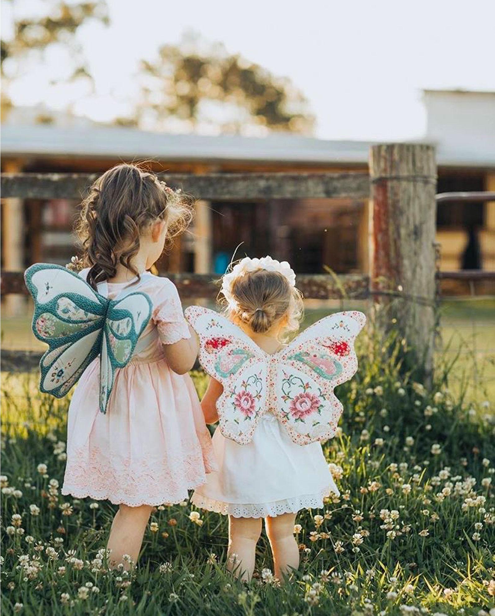 butterfly-wings