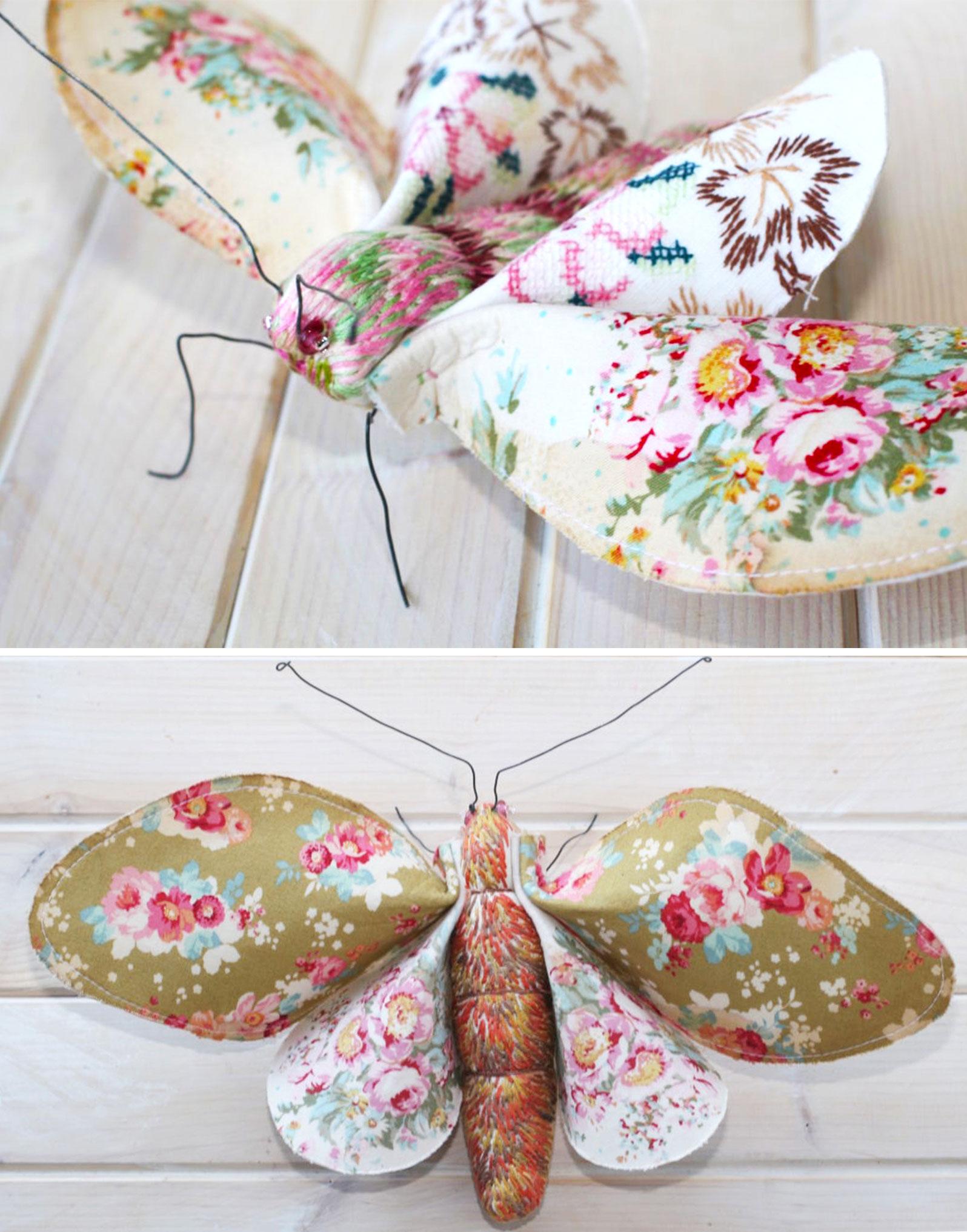 peach-blossom-moths